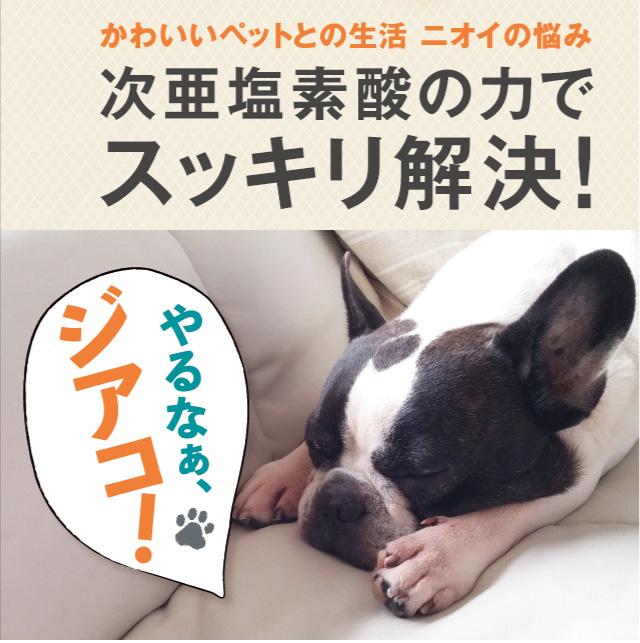 ペット臭の対策にもおすすめ